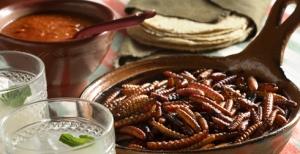 Tacos de gusanos de maguey